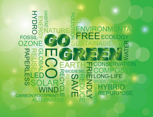 Environmental Impact of Solar